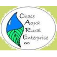 Chase-Aqua-Logo