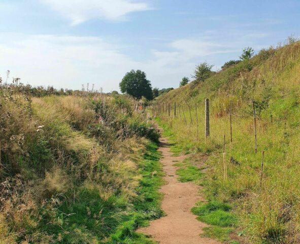 New Lichfield Canal Walk